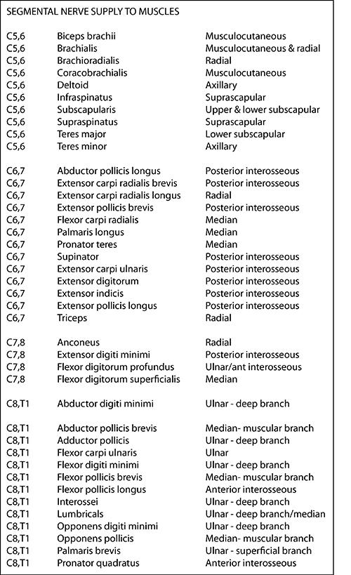 Instant Anatomy - Upper Limb - Nerves - Segmental supply for muscles