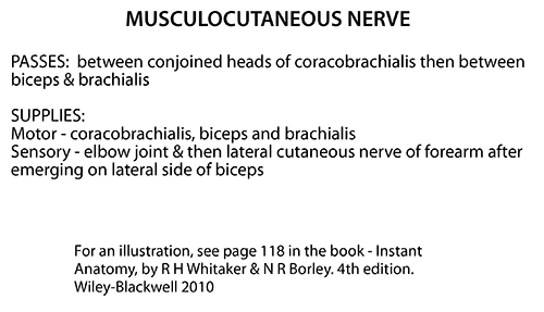 Instant Anatomy Upper Limb Nerves Specific Musculocutaneous