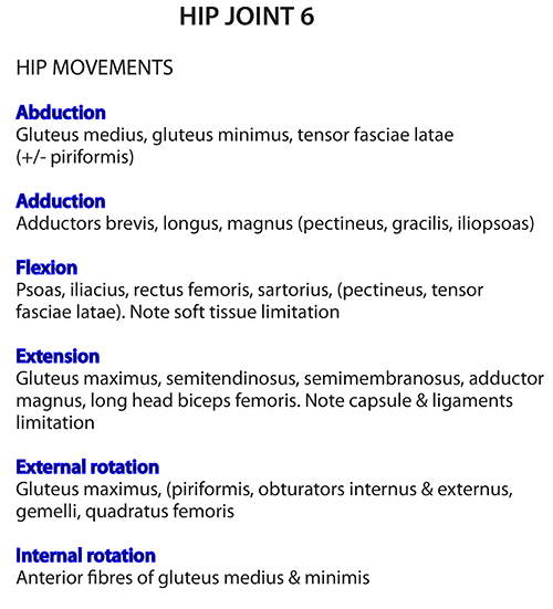 Instant Anatomy Lower Limb Joints Hip Movements