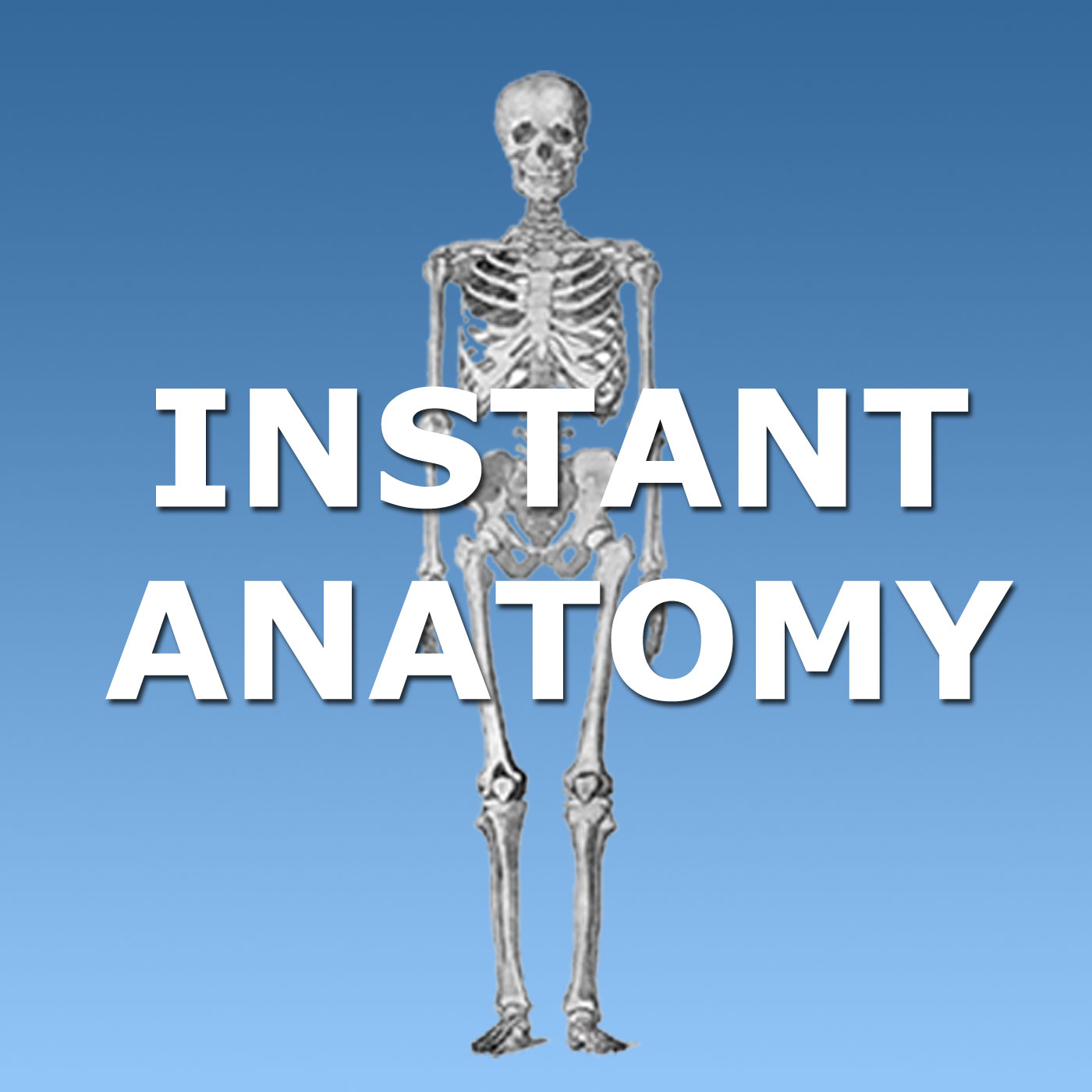 Instant Anatomy Podcast